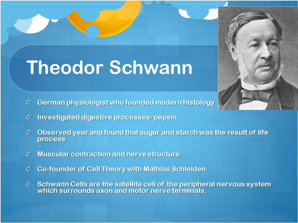 Theodor Schwann German physiologist who founded modern histology Investigated digestive processes- pepsin Observed year and found that sugar and starc