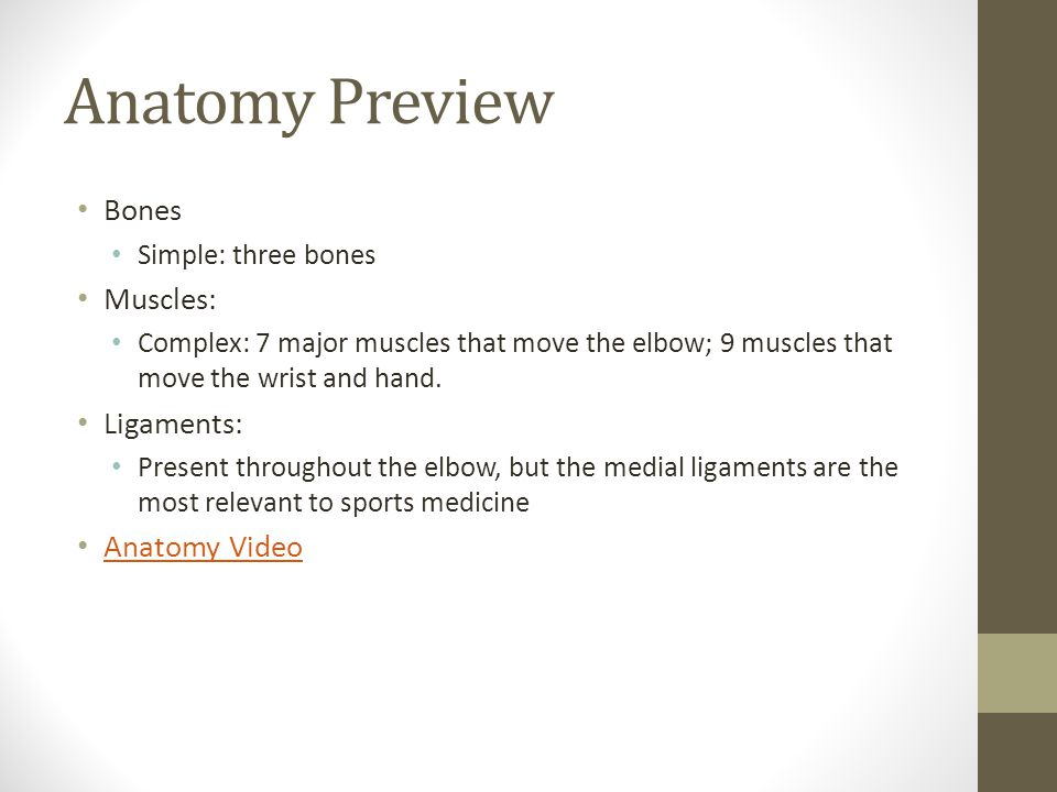 Anatomy Preview Bones Simple: three bones Muscles: Complex: 7 major muscles that move the elbow; 9 muscles that move the wrist and hand.