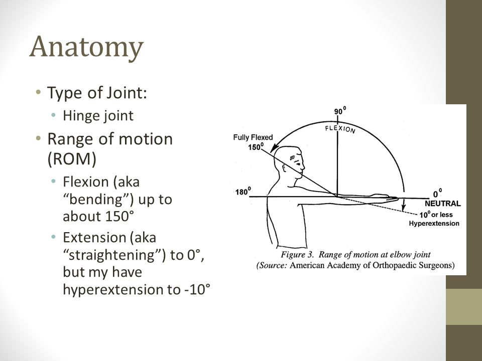 Anatomy Type of Joint: Hinge joint Range of motion (ROM) Flexion (aka bending ) up to about 150° Extension (aka straightening ) to 0°, but my have hyperextension to -10°
