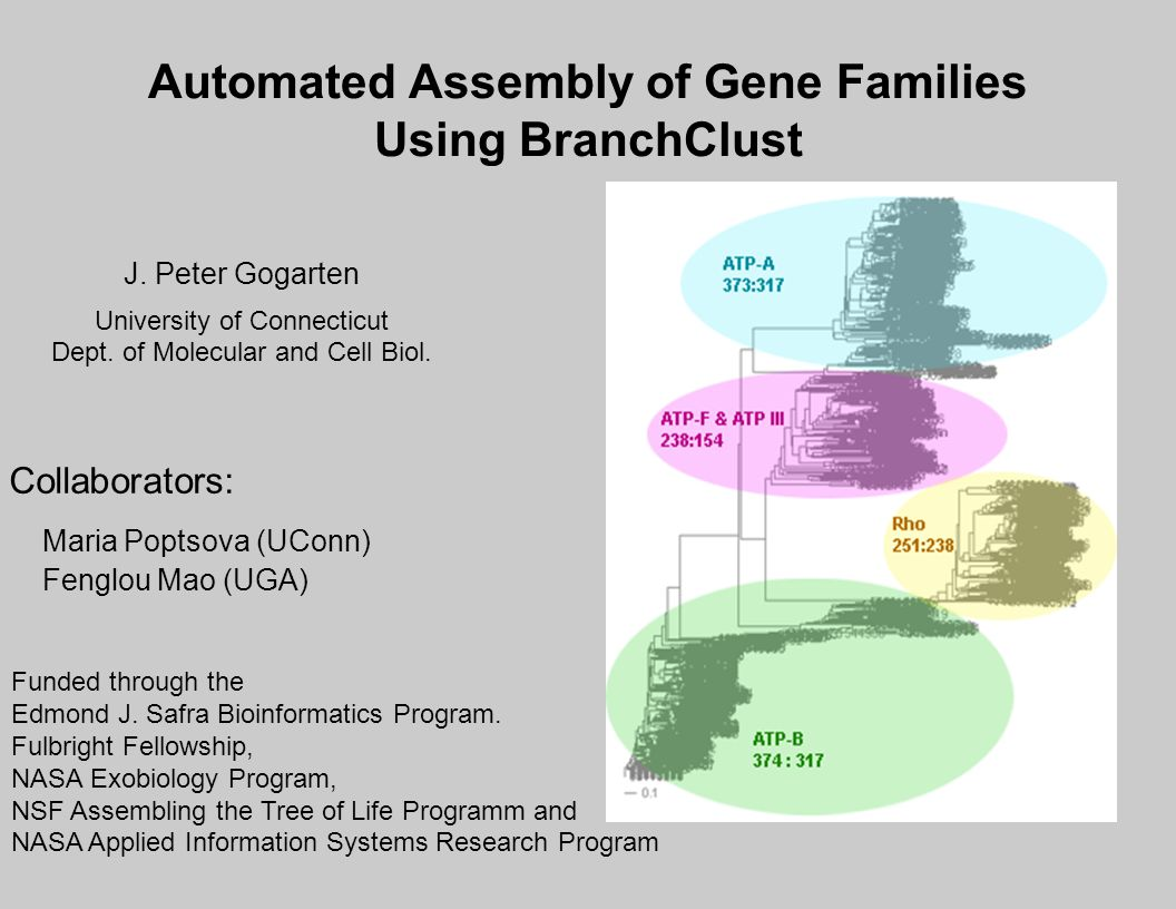 Automated Assembly of Gene Families Using BranchClust Collaborators: Maria Poptsova (UConn) Fenglou Mao (UGA) Funded through the Edmond J.