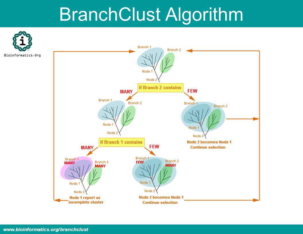 BranchClust Algorithm www.bioinformatics.org/branchclust