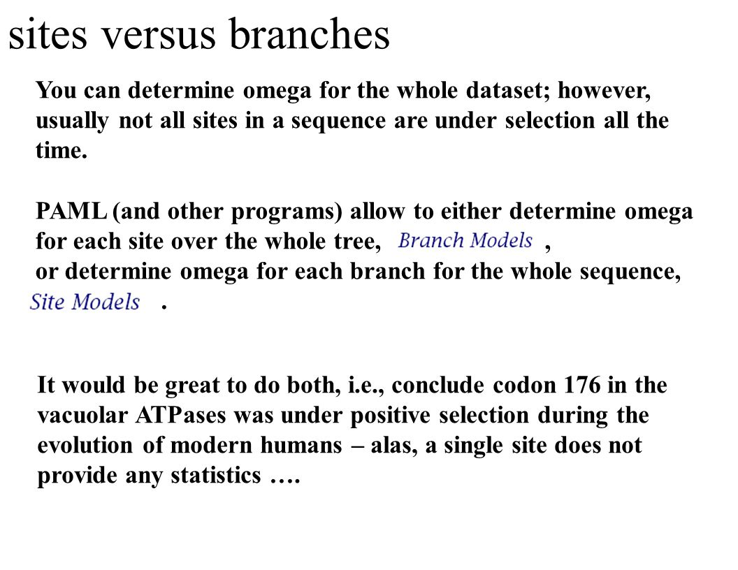 Detailed Summary in Text Wrangler