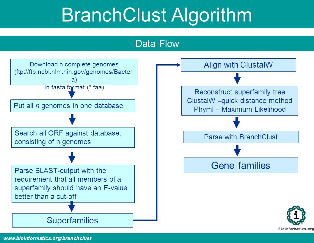 BranchClust Algorithm Data Flow www.bioinformatics.org/branchclust Download n complete genomes (ftp://ftp.ncbi.nlm.nih.gov/genomes/Bacteri a) In fasta format (*.faa) Put all n genomes in one database Search all ORF against database, consisting of n genomes Parse BLAST-output with the requirement that all members of a superfamily should have an E-value better than a cut-off Superfamilies Align with ClustalW Reconstruct superfamily tree ClustalW –quick distance method Phyml – Maximum Likelihood Parse with BranchClust Gene families