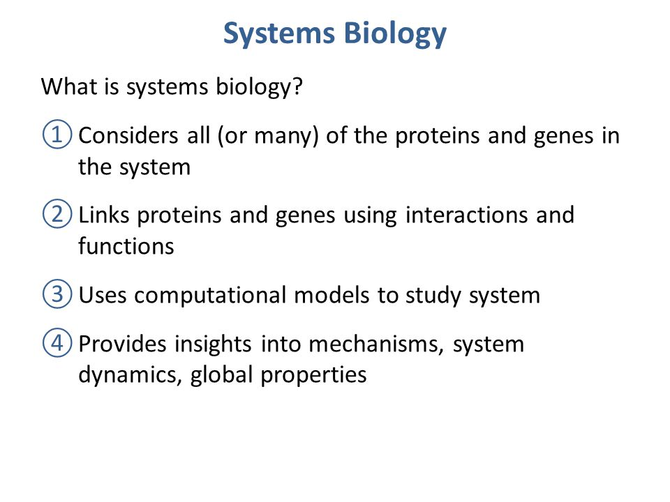 Systems Biology What is systems biology.