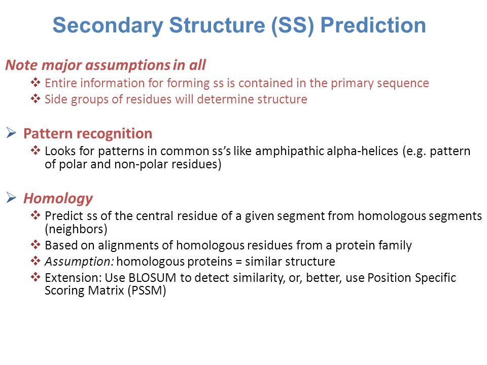 Secondary Structure (SS) Prediction Note major assumptions in all  Entire information for forming ss is contained in the primary sequence  Side groups of residues will determine structure  Pattern recognition  Looks for patterns in common ss's like amphipathic alpha-helices (e.g.