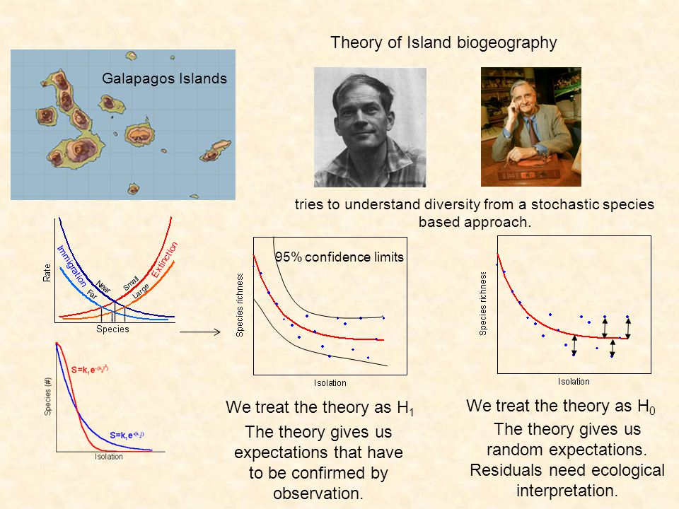 Multispecies metapopulation and patch occupancy models Islands in a fragmented landscape Random dispersal of individuals between islands results in a stable pattern of colonization The change of occupancy p in time depends on patch size and distance according to a logistc growth equation.