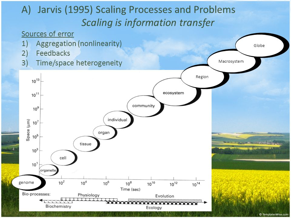 A)Jarvis (1995) Scaling Processes and Problems Scaling is information transfer Sources of error 1)Aggregation (nonlinearity) 2)Feedbacks 3)Time/space