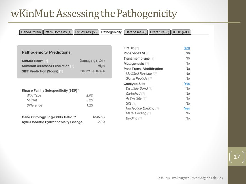 17 wKinMut: Assessing the Pathogenicity José MG Izarzugaza - txema@cbs.dtu.dk