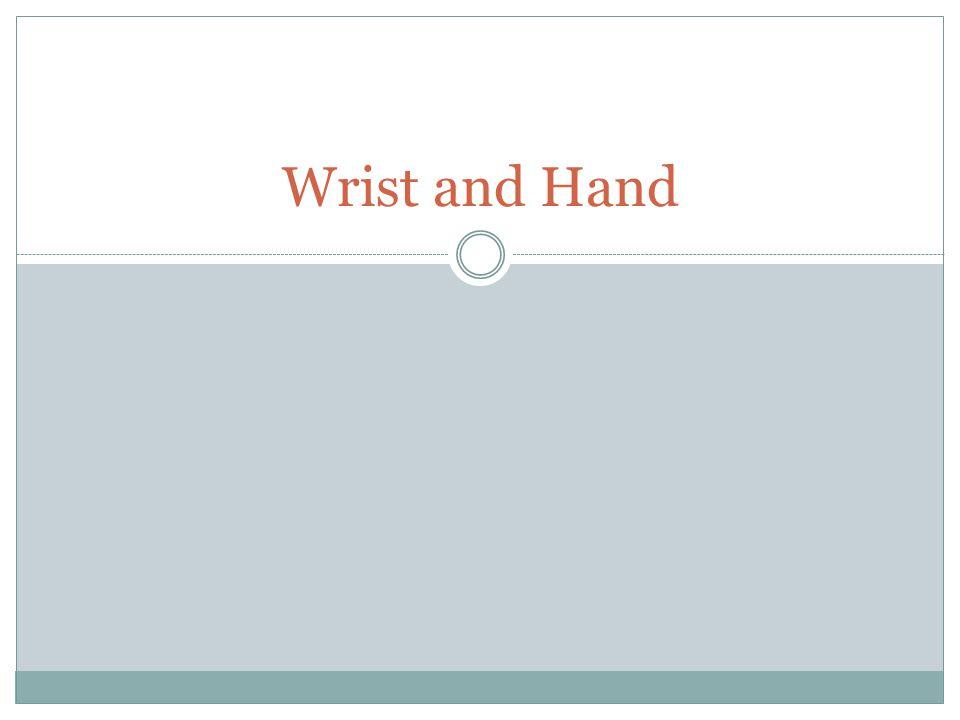Wrist and Hand