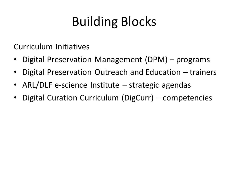 Building Blocks Curriculum Initiatives Digital Preservation Management (DPM) – programs Digital Preservation Outreach and Education – trainers ARL/DLF e-science Institute – strategic agendas Digital Curation Curriculum (DigCurr) – competencies