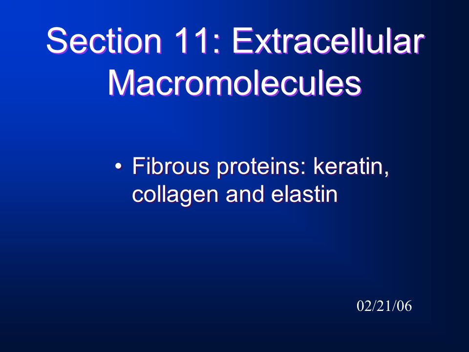 Next topic: Section 12: Mineralized tissues.