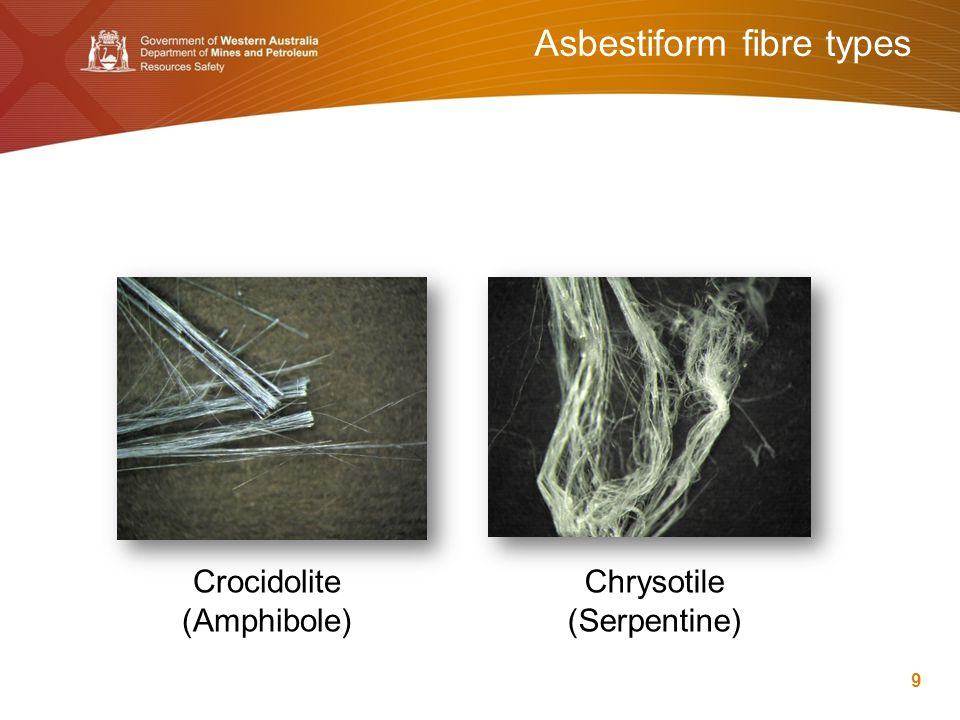 Asbestiform fibre types 9 Crocidolite (Amphibole) Chrysotile (Serpentine)