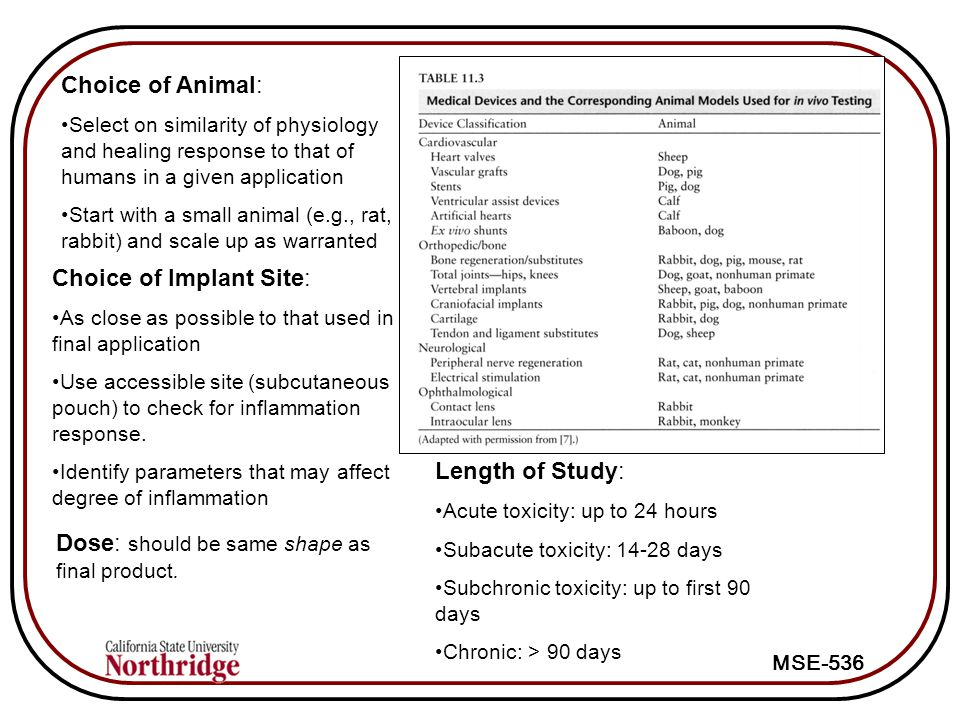 MSE-536 Choice of Animal: Select on similarity of physiology and healing response to that of humans in a given application Start with a small animal (e.g., rat, rabbit) and scale up as warranted Choice of Implant Site: As close as possible to that used in final application Use accessible site (subcutaneous pouch) to check for inflammation response.