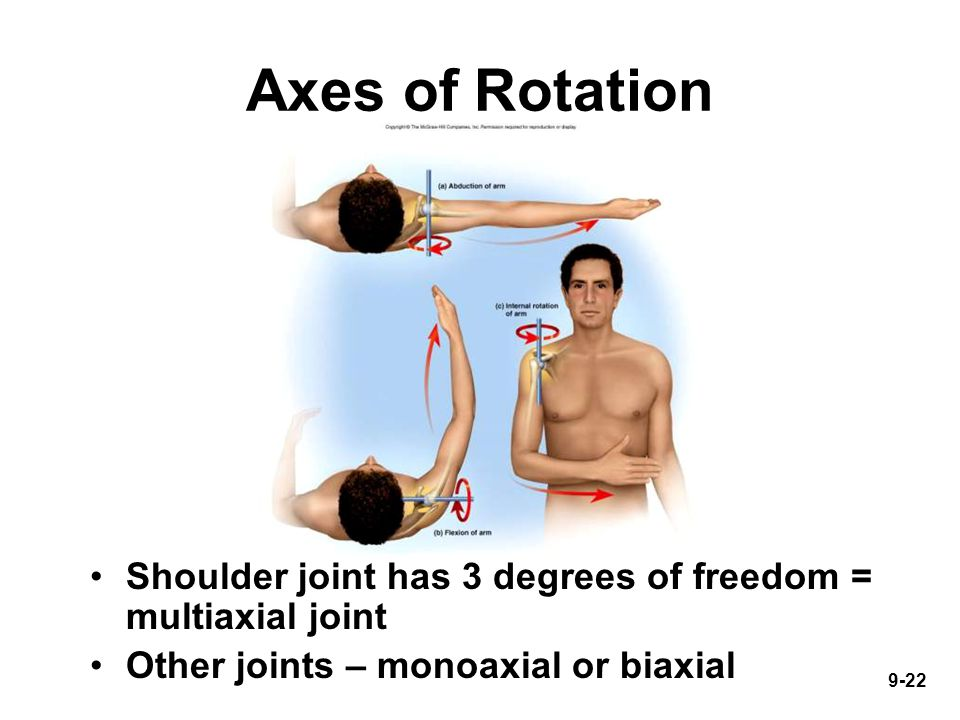 9-22 Axes of Rotation Shoulder joint has 3 degrees of freedom = multiaxial joint Other joints – monoaxial or biaxial