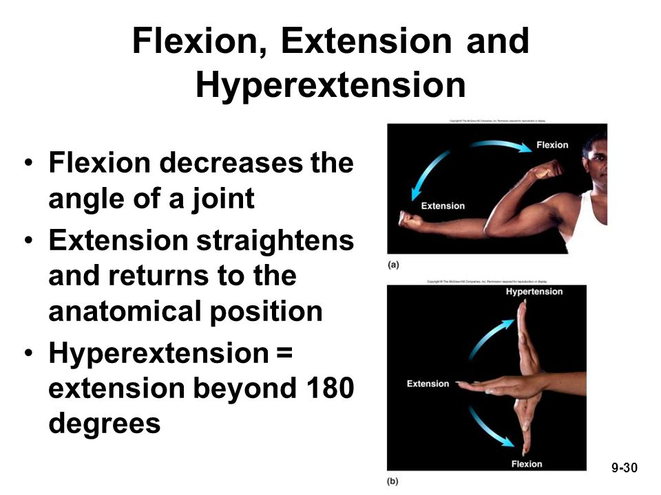 9-30 Flexion, Extension and Hyperextension Flexion decreases the angle of a joint Extension straightens and returns to the anatomical position Hyperextension = extension beyond 180 degrees