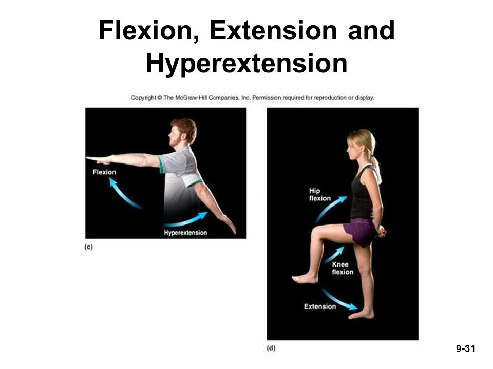 9-31 Flexion, Extension and Hyperextension