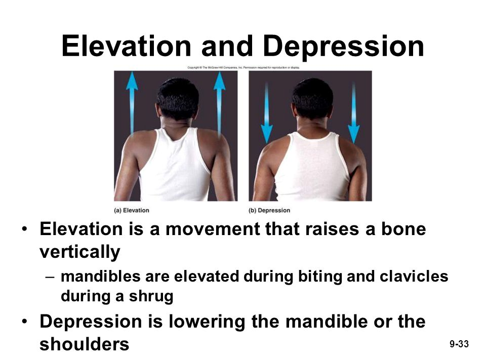 9-33 Elevation and Depression Elevation is a movement that raises a bone vertically –mandibles are elevated during biting and clavicles during a shrug Depression is lowering the mandible or the shoulders