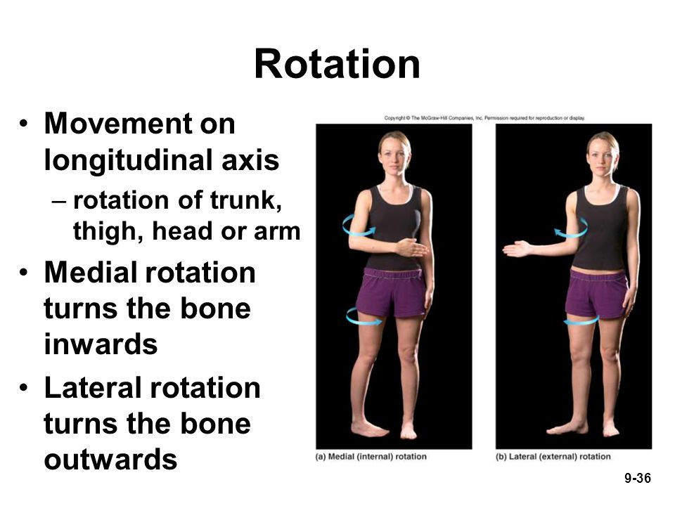 9-36 Rotation Movement on longitudinal axis –rotation of trunk, thigh, head or arm Medial rotation turns the bone inwards Lateral rotation turns the bone outwards