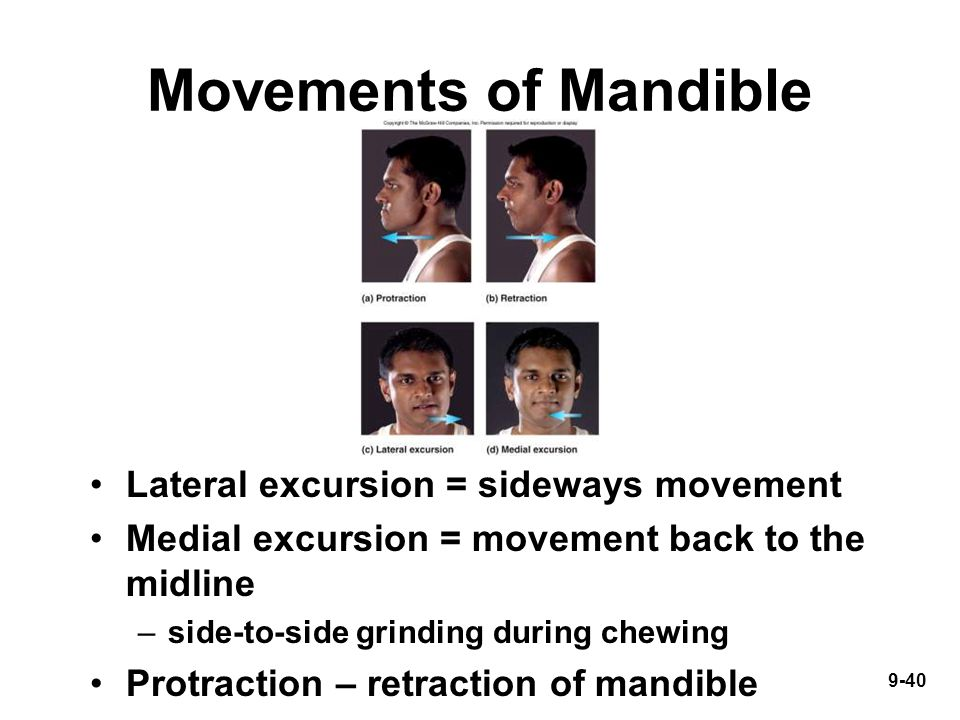 9-40 Movements of Mandible Lateral excursion = sideways movement Medial excursion = movement back to the midline –side-to-side grinding during chewing Protraction – retraction of mandible