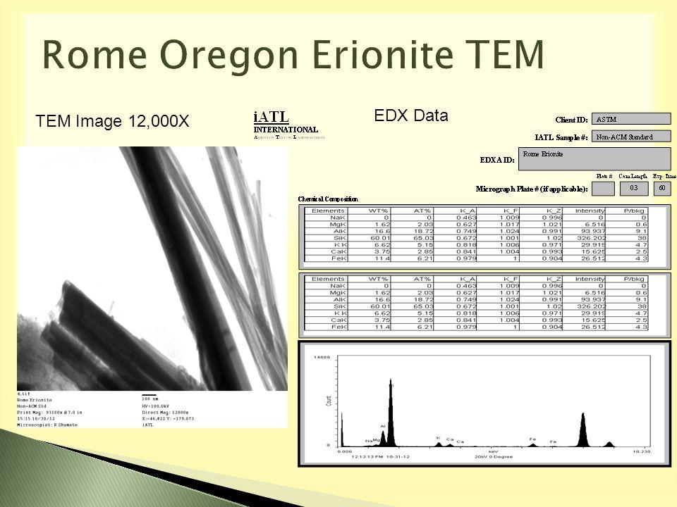 TEM Image 12,000X EDX Data