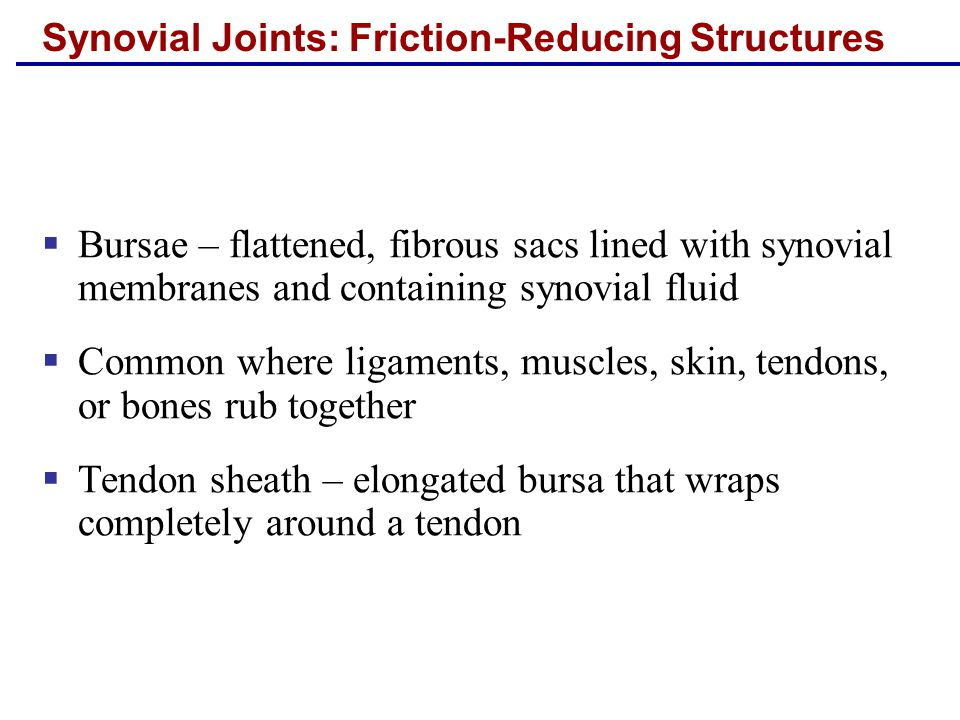 Synovial Joints: Friction-Reducing Structures  Bursae – flattened, fibrous sacs lined with synovial membranes and containing synovial fluid  Common where ligaments, muscles, skin, tendons, or bones rub together  Tendon sheath – elongated bursa that wraps completely around a tendon
