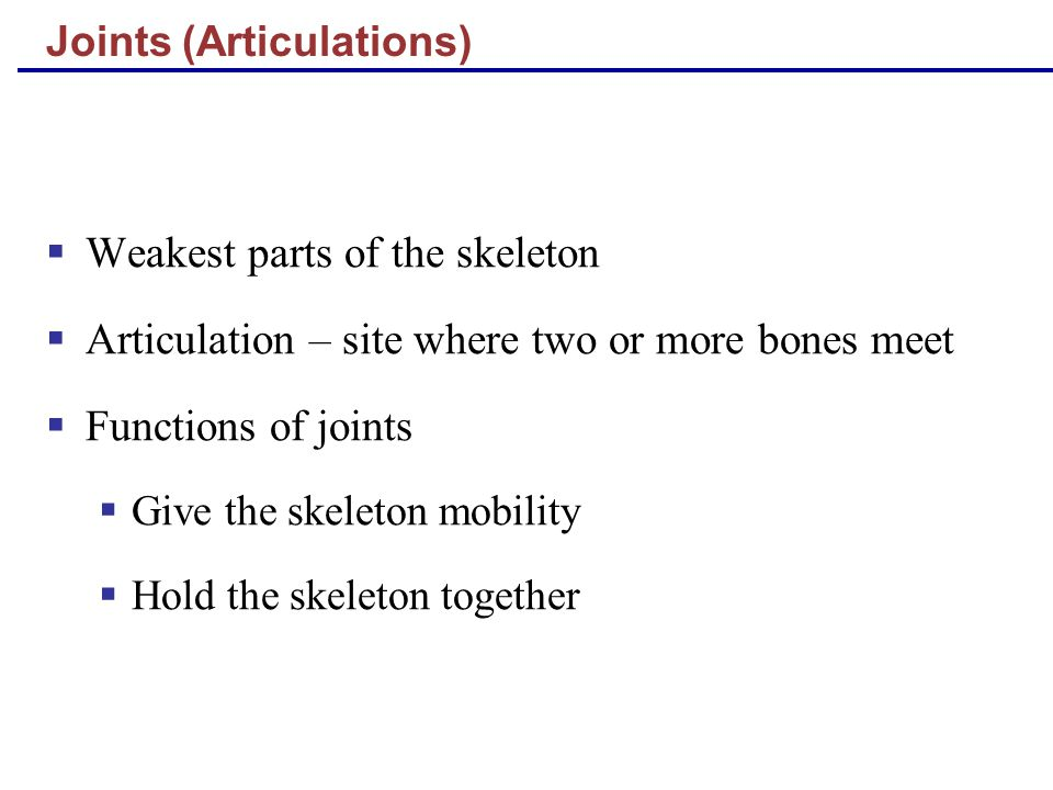 Joints (Articulations)  Weakest parts of the skeleton  Articulation – site where two or more bones meet  Functions of joints  Give the skeleton mobility  Hold the skeleton together