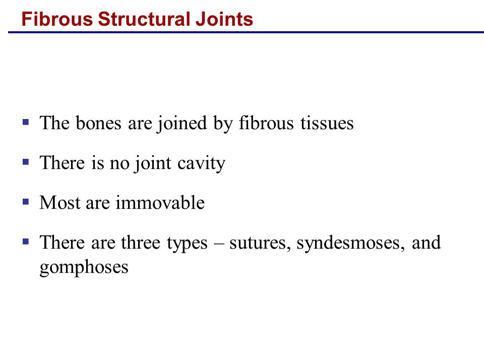 Fibrous Structural Joints  The bones are joined by fibrous tissues  There is no joint cavity  Most are immovable  There are three types – sutures, syndesmoses, and gomphoses