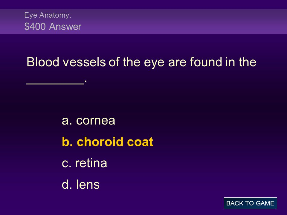 Eye Anatomy: $400 Answer Blood vessels of the eye are found in the ________.