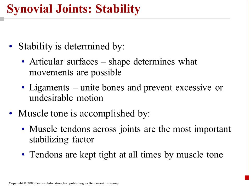 Copyright © 2003 Pearson Education, Inc. publishing as Benjamin Cummings Synovial Joints: Stability Stability is determined by: Articular surfaces – s