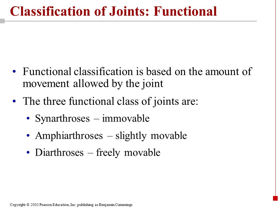 Copyright © 2003 Pearson Education, Inc. publishing as Benjamin Cummings Classification of Joints: Functional Functional classification is based on th