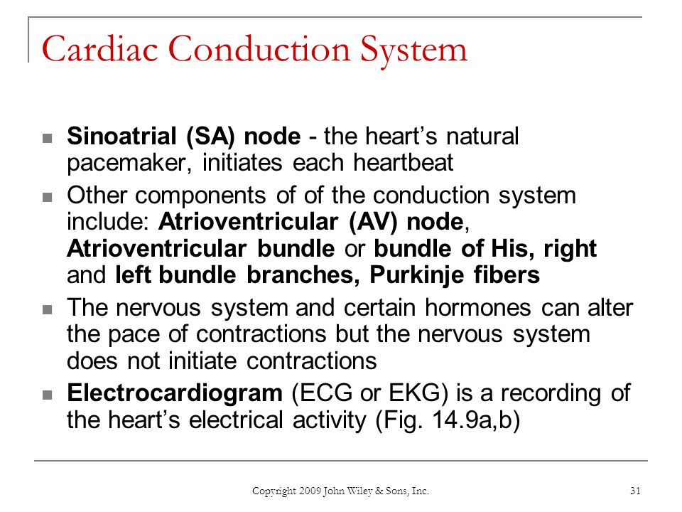 Copyright 2009 John Wiley & Sons, Inc. 31 Cardiac Conduction System Sinoatrial (SA) node - the heart's natural pacemaker, initiates each heartbeat Oth