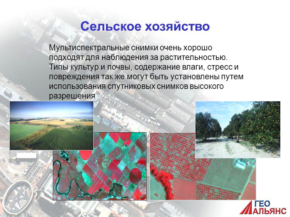 Сельское хозяйство Мультиспектральные снимки очень хорошо подходят для наблюдения за растительностью.