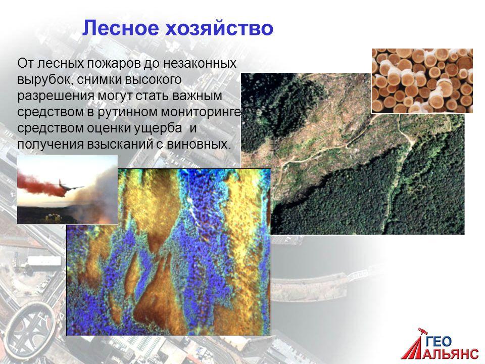 Лесное хозяйство От лесных пожаров до незаконных вырубок, снимки высокого разрешения могут стать важным средством в рутинном мониторинге, средством оценки ущерба и получения взысканий с виновных.