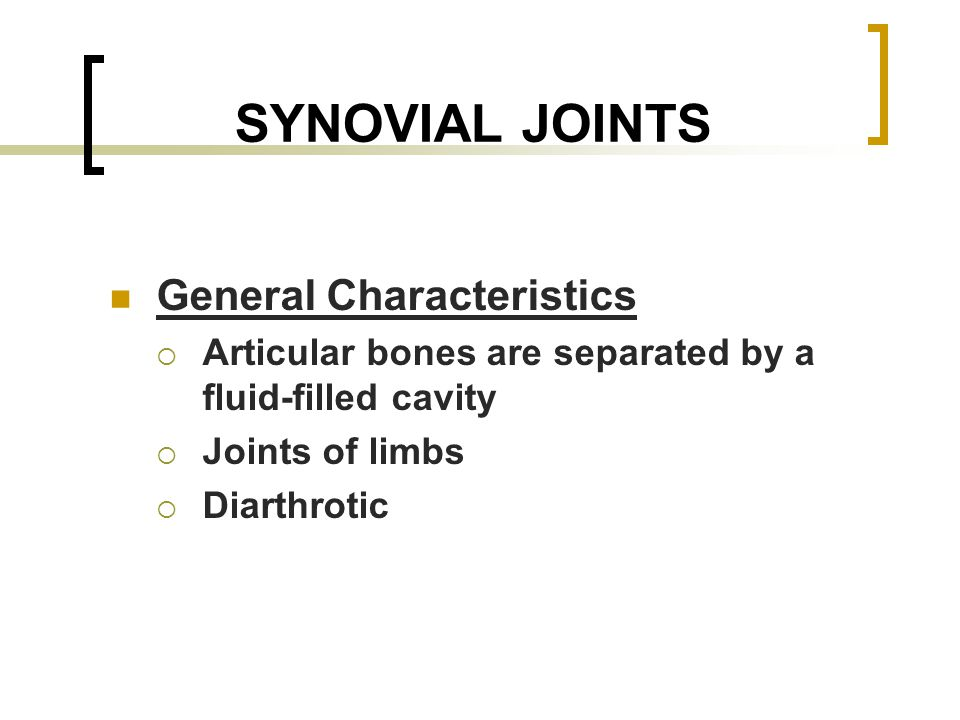 SYNOVIAL JOINTS General Characteristics  Articular bones are separated by a fluid-filled cavity  Joints of limbs  Diarthrotic