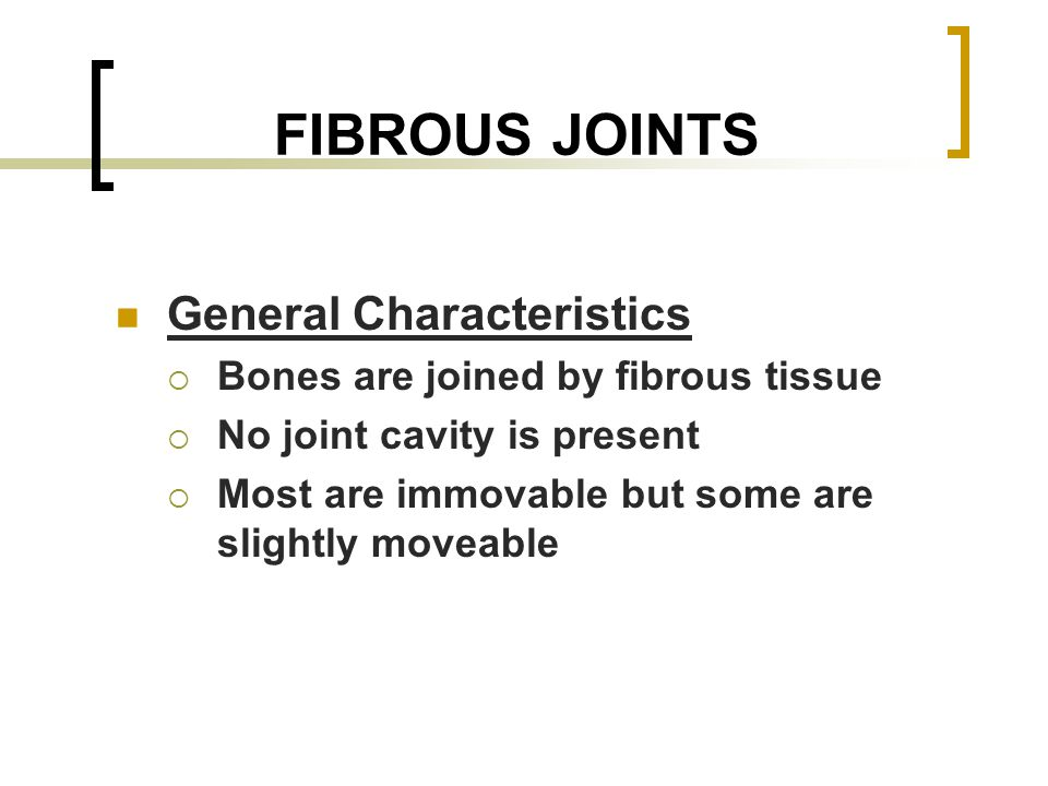 TYPES OF FIBROUS JOINTS Sutures (synostoses) Syndesmoses Gomphoses