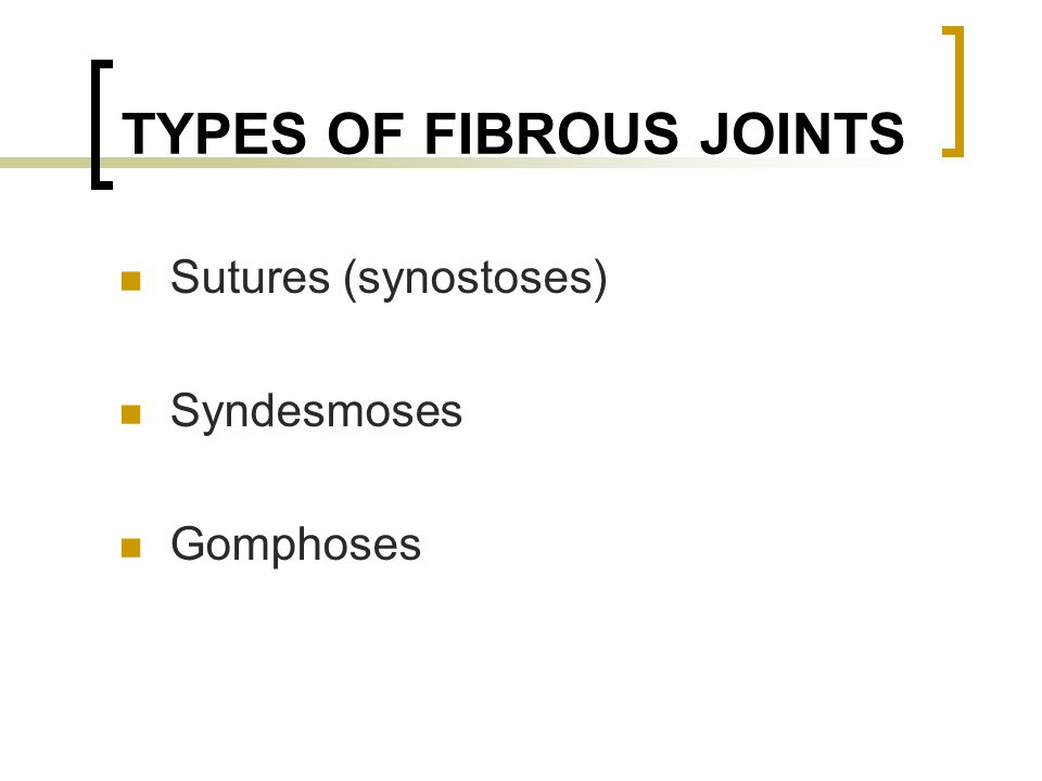 FIBROUS JOINTS Sutures Synostoses =fused sutures