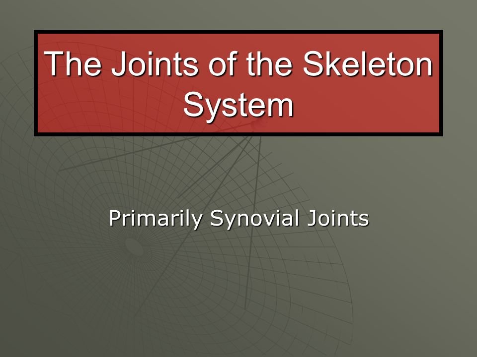 JOINTS  Joints or articulations are functional junction between bones…or the site where two bones meet.