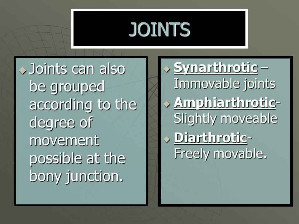  The joint between the proximal ends of the radius and the ulna.
