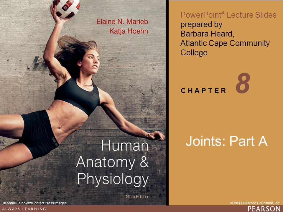 Human Anatomy & Physiology Ninth Edition PowerPoint ® Lecture Slides prepared by Barbara Heard, Atlantic Cape Community College C H A P T E R © 2013 P
