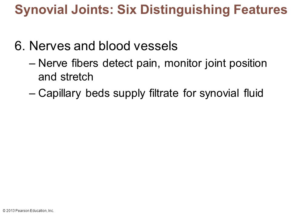 © 2013 Pearson Education, Inc. Synovial Joints: Six Distinguishing Features 6. Nerves and blood vessels –Nerve fibers detect pain, monitor joint posit