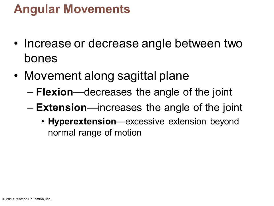 © 2013 Pearson Education, Inc. Angular Movements Increase or decrease angle between two bones Movement along sagittal plane –Flexion—decreases the ang