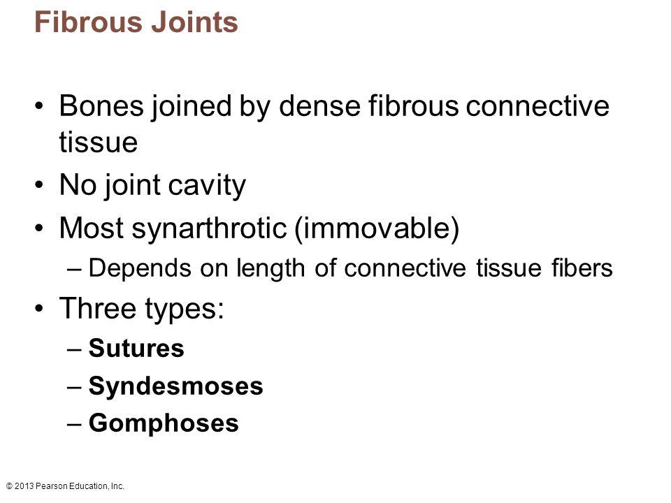 © 2013 Pearson Education, Inc.Figure 8.2b Cartilaginous joints.