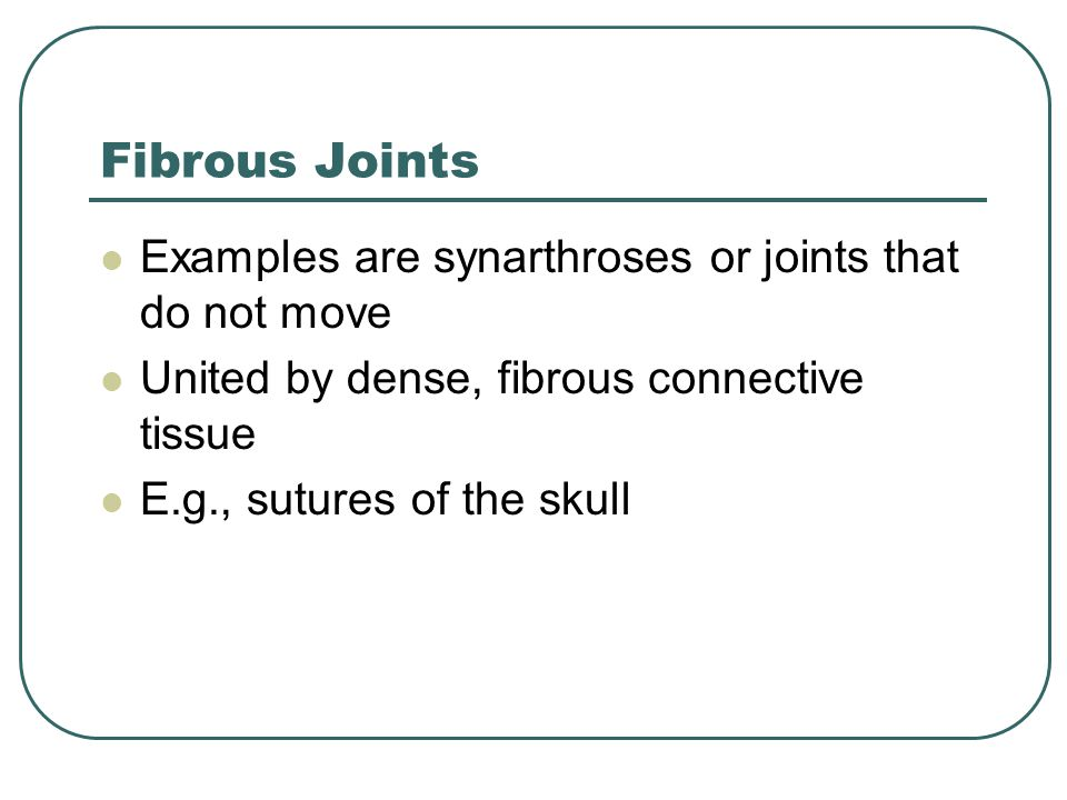 Fibrous Joints Examples are synarthroses or joints that do not move United by dense, fibrous connective tissue E.g., sutures of the skull