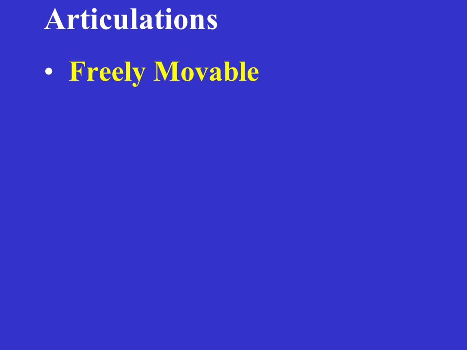 Articulations Freely Movable