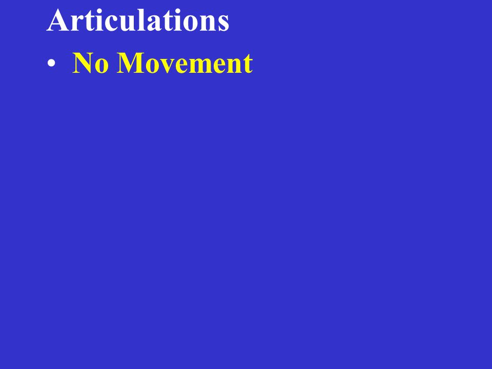 Articulations No Movement – Fibrous