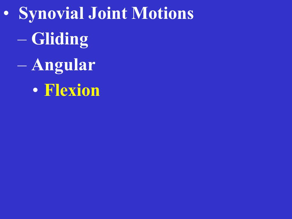 Synovial Joint Motions – Gliding – Angular Flexion