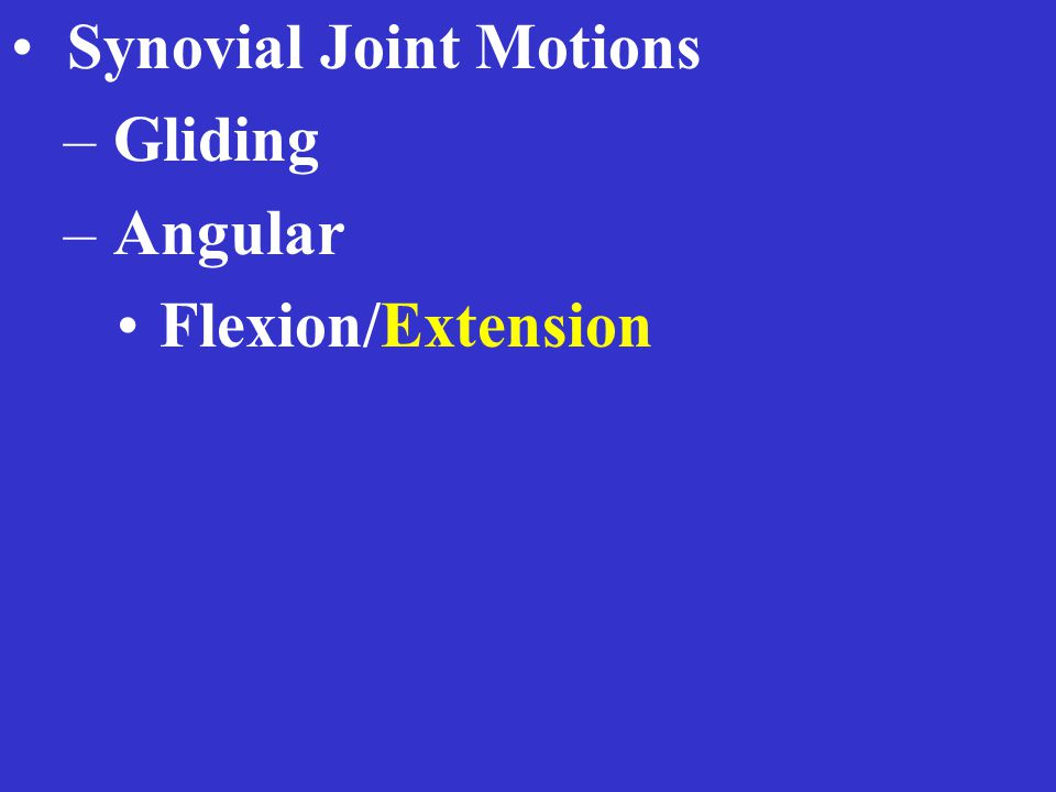 Synovial Joint Motions – Gliding – Angular Flexion/Extension