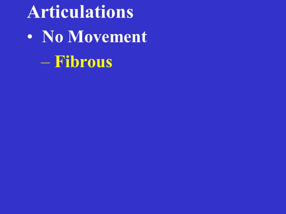 Articulations No Movement – Fibrous Suture