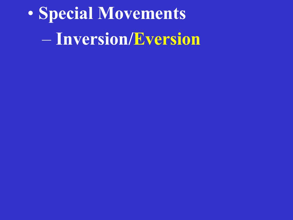 Special Movements – Inversion/Eversion
