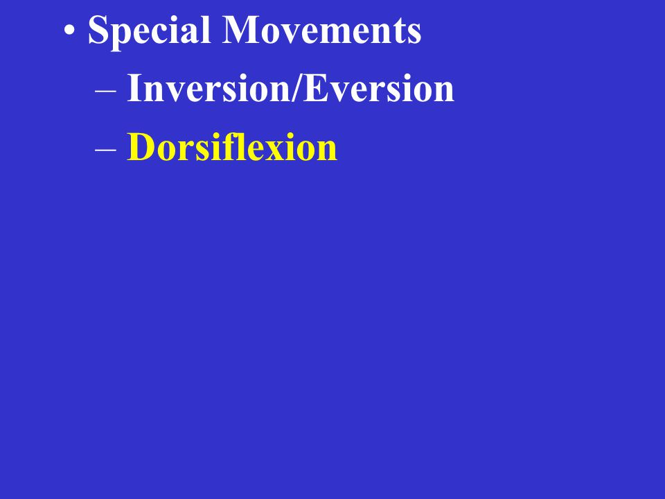 Special Movements – Inversion/Eversion – Dorsiflexion